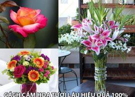 Cách cắm hoa tươi lâu hiệu quả 100% của Mrhoa